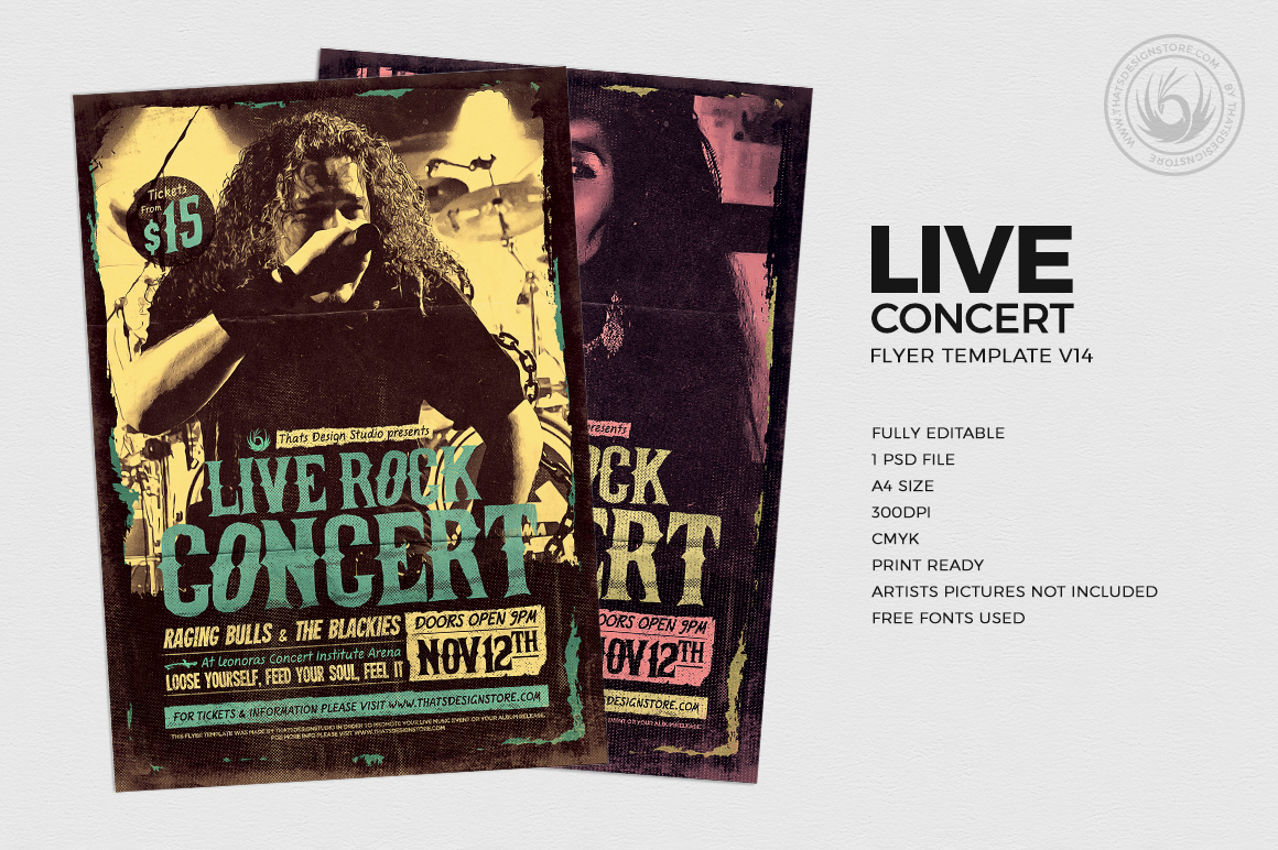 Live Concert Flyer Template V14