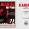 Flamenco Flyer Template V6