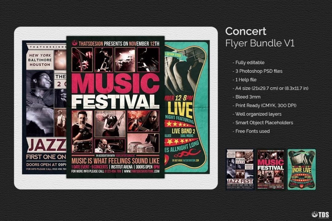 Concert Flyer Bundle V1
